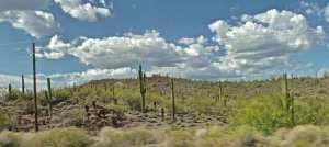 Arizona desert 1