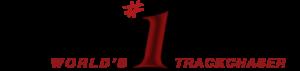 randy lewis website logo