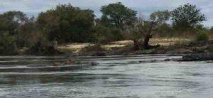 canoe-trip-hippos