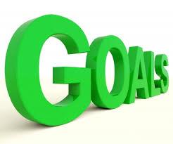 goals 2919
