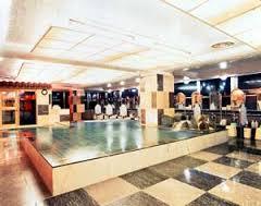 Green Plaza Shinjuku Capsule Hotel mineral springs