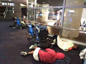 auckland airport sleeping