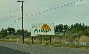 fallon city sign