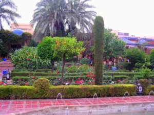 Even though it was cloudy, the hotel garden was pretty to look at it.