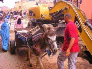 morocco medina 392