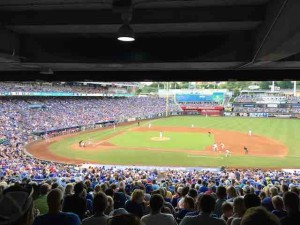 royals baseball view